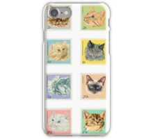 Travelling Kittens iPhone Case/Skin