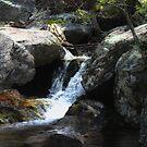 Small Cascade at Fallingwater Cascades by virginian