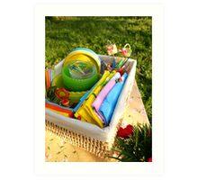 Bright color summer picnic accessories Art Print