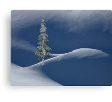 Snow Covered Tree and Mountains Canvas Print