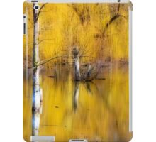 A Magical Confluence iPad Case/Skin