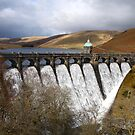 Craig Goch reservoir, Elan Valley, Wales UK. by britishphotos