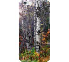 Aspen Morning iPhone Case/Skin