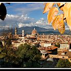 Views over Florence by Shaun Whiteman