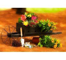 As My Garden Grows Photographic Print