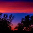 Bright Skies by Vince Scaglione