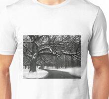 Winding Path Unisex T-Shirt