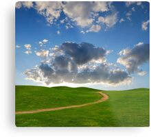 pedestrian path between green hills on a background picturesque sky Metal Print