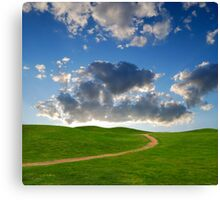 pedestrian path between green hills on a background picturesque sky Canvas Print