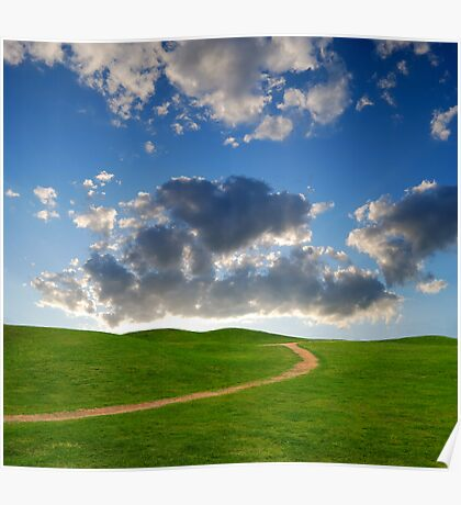 pedestrian path between green hills on a background picturesque sky Poster