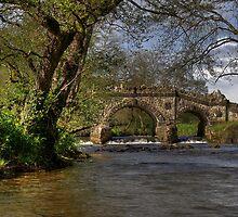 Shallowford Bridge by Derek Green