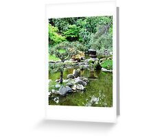 Reflections in a pond Greeting Card