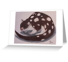 Spotted Quoll Greeting Card
