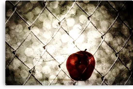 The Forbidden Fruit by Ingz