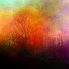 Field of Dreams by Brian Gaynor