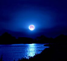 Moonlit Night Light by Vince Scaglione