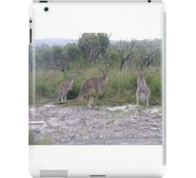 Three Roo's iPad Case/Skin