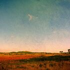 Dangars Lagoon, Northern Tablelands, NSW, Australia by Kitsmumma