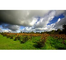 Storm clouds over Middlebrook Winery Photographic Print