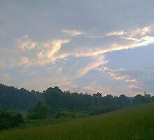 Silver Sky by Alicia  Sims