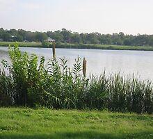 Woodlawn Lake&Park, San Antonio, TX (City Park) by StellaMorales