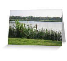 Woodlawn Lake&Park, San Antonio, TX (City Park) Greeting Card