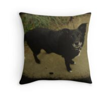 What ARE you doing? Throw Pillow