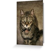 Give Me A Home Greeting Card