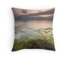 Green Earth Throw Pillow