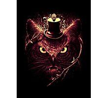 Meowl Photographic Print