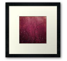Daring Pink Framed Print