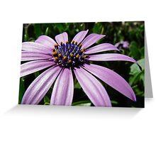 Flower 02 Greeting Card