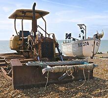 On the Beach by John Thurgood