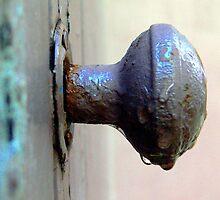 Rusty Knob :) by Trish Woodford