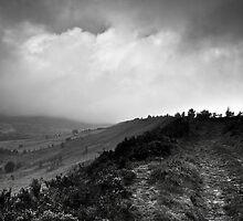 track royd edge meltham by Jean Bashford