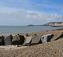 Eastbourne and Pier by John Thurgood