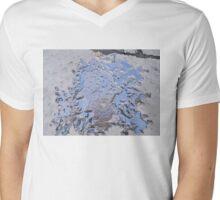 Dante Alighieri Mens V-Neck T-Shirt