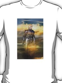 The guardian of the celestial palace T-Shirt