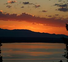 Sunset in Shoreline, Washington by Barb White