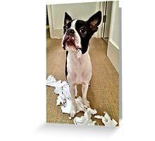 Nope, it definitely wasn't me! Greeting Card