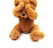 Sad bear by faithimages