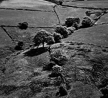 fields royd edge meltham by Jean Bashford