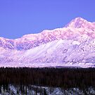 Mount McKinley by Christopher  Boswell