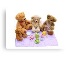 teddy bears picnic Canvas Print