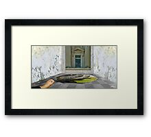 CROCODILE BATH Framed Print