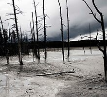 Desolate Landscape by Alison Simpson
