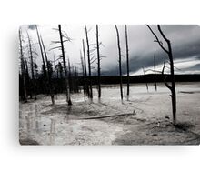 Desolate Landscape Canvas Print