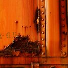 Orange Train With Rust by Larry Costales