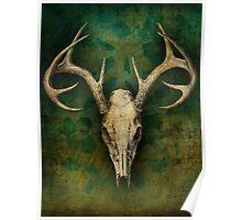My deer... Poster
