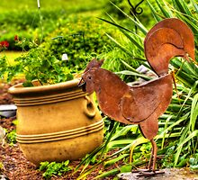 Rooster In The Garden by BigD